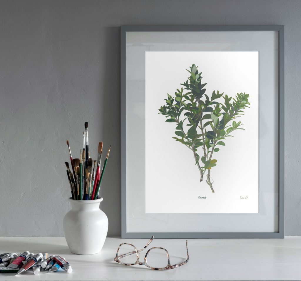 Botanical Art Elements Buxus Print