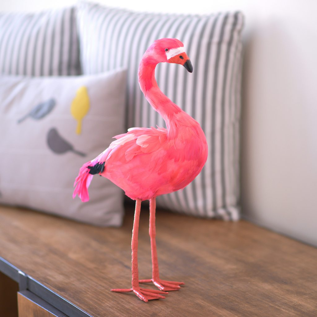 Flora The Pink Feathered Flamingo The Letteroom