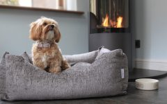 Bone & Home Luxury Dog Beds and Accessories
