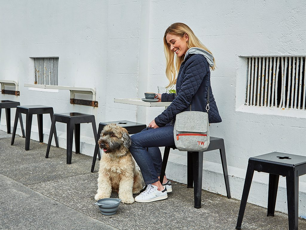 Travel Wags The Walker Set Stylish Dog Walking Bag
