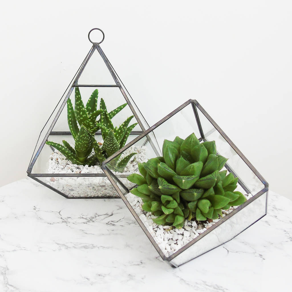 Glass Pyramid Terrarium The Den & Now Notonthehighstreet