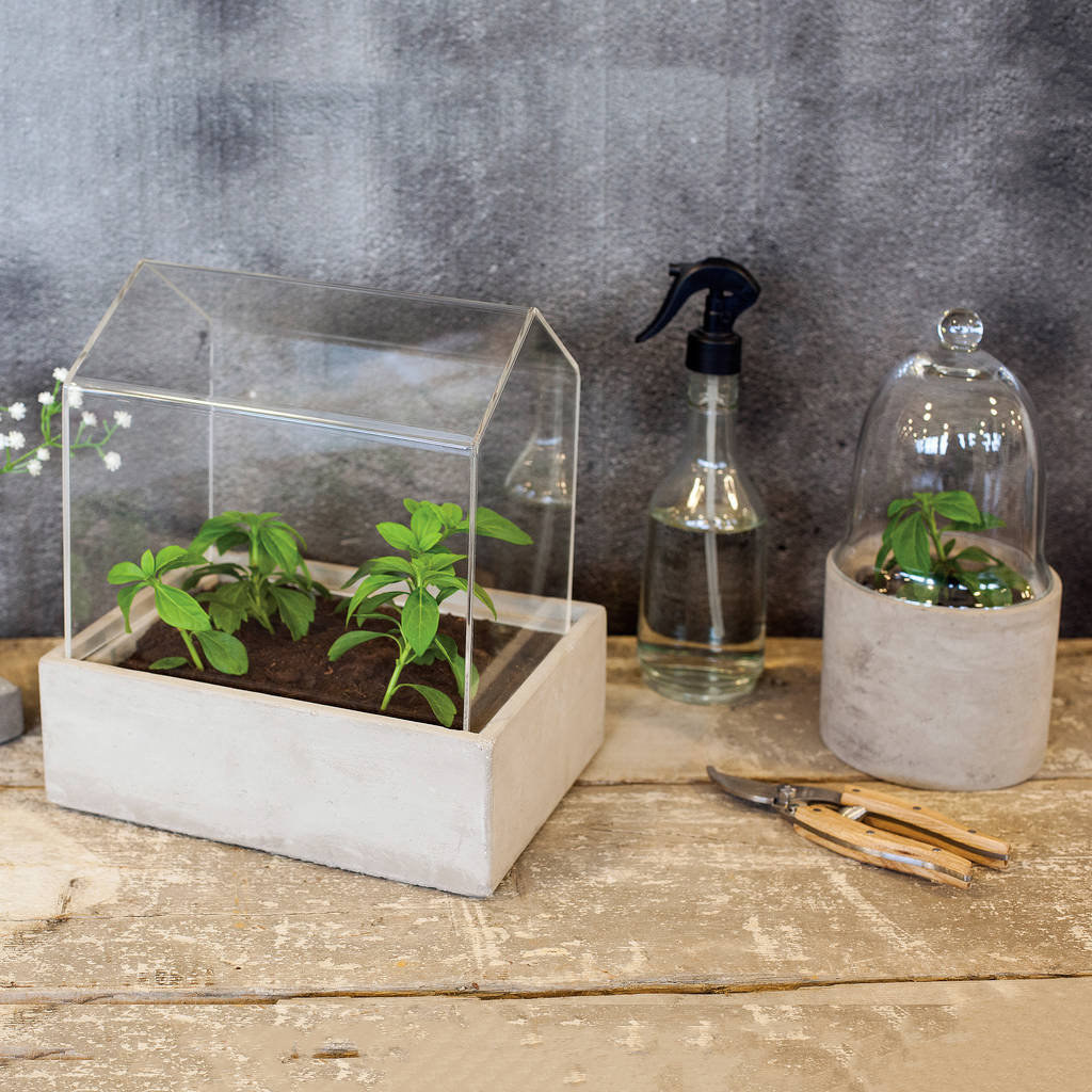 Mini Greenhouse Blackdown Lifestyle Notonthehighstreet