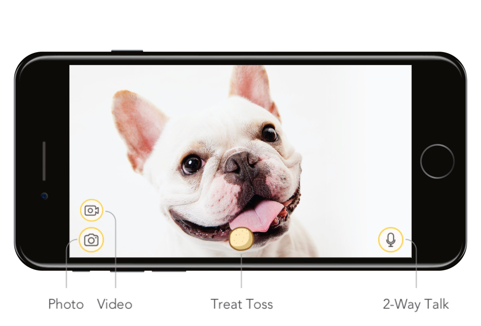 Smart Phone HD Live Stream Interactive Dog Camera