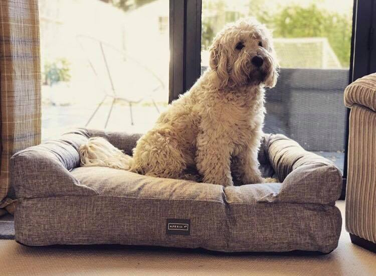 Deep Filled Luxury Dog Bed