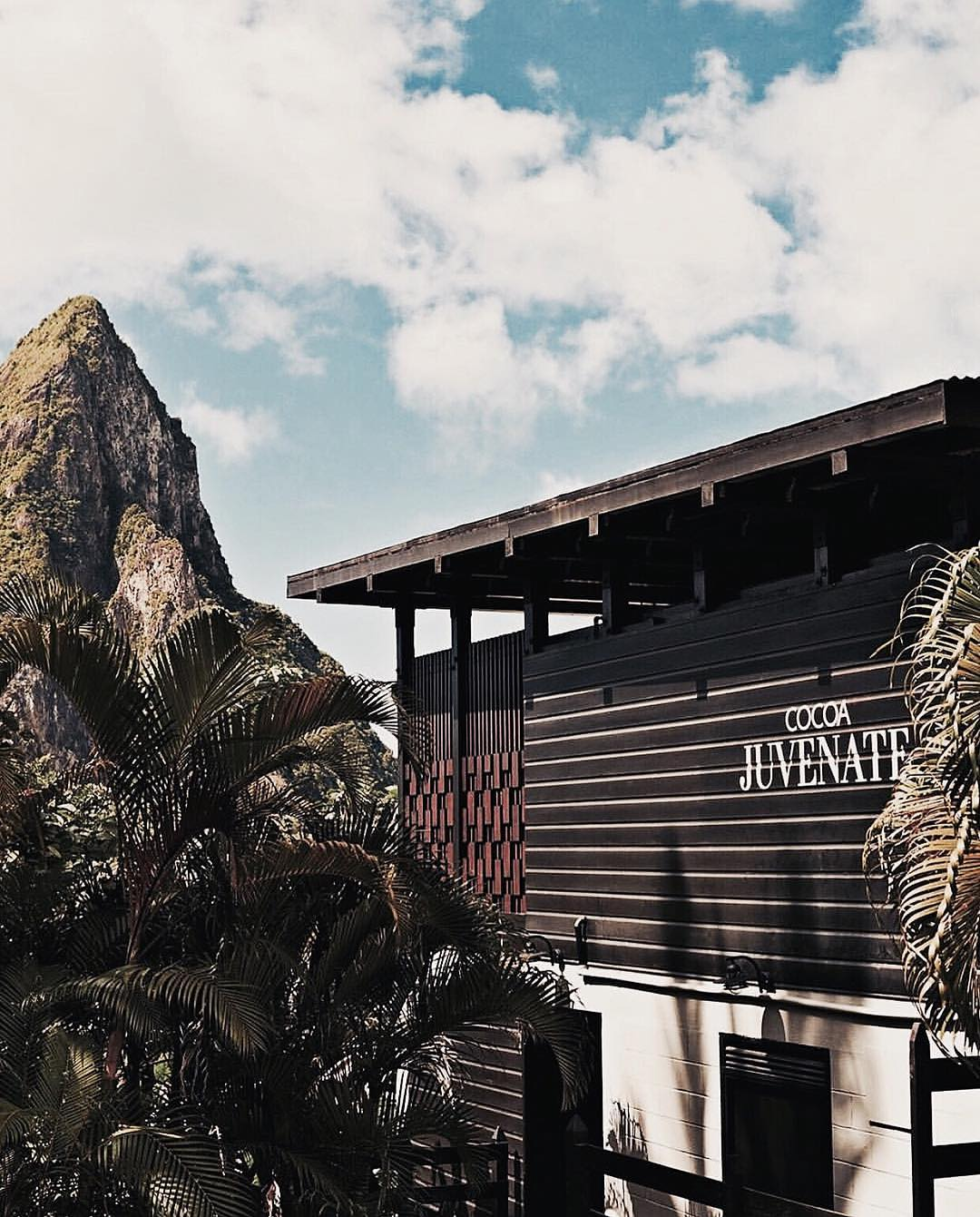 Rabot Estate Saint Lucia Hotel Chocolat